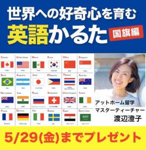 すみちゃん先生 国旗カルタ